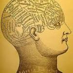 brainhead