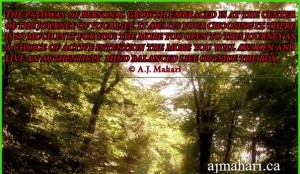 EmbracePersonalGrowthMarch2115ajmaharisite